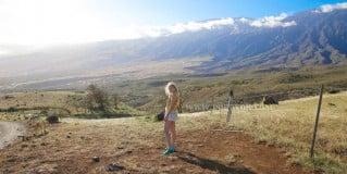 「遊記」夏威夷蜜月半自由行行程推薦,茂宜島觀光巴士一日看遍彩虹樹/雨林/瀑布/黑沙灘/峽谷/火山熔岩出海口