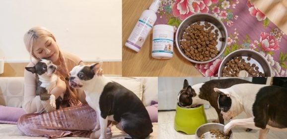 狗狗皮膚腸胃保健推薦|挑食狗也吃光光,澳洲PAW毛寶貝護理系列寶膚樂/寶腸樂/寶骨樂/敏感專用洗毛精
