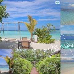 馬爾地夫遊記|住宿美食推薦省錢爽玩居民島:緬梔花飯店,一起坐在鞦韆上面欣賞天堂美景吧! Plumeria Maldives