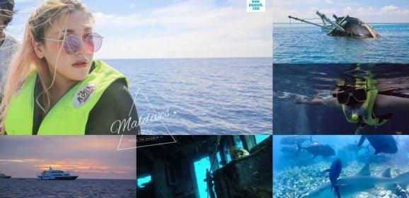 馬爾地夫遊記 居民島爽玩跳島行程推薦,與護士鯊魟魚共遊、沉船浮潛、黃昏巡弋 Plumeria Maldives